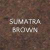 Sumatra brown